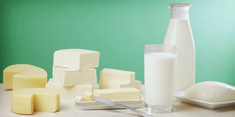 Milchprodukte im Test